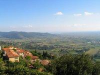Arezzo & Osten