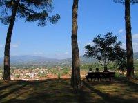 Provinz Arezzo